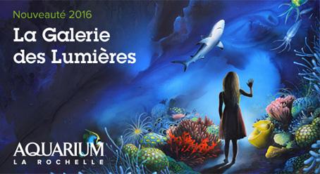 La Galerie des Lumières Aquarium de la Rochelle
