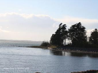Différents paysages de la côte