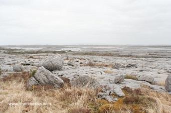 Le Burren, une mer de roches
