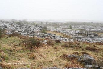 Le Burren, un climat humide
